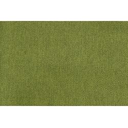 Modena 35 green